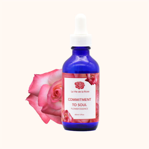 la vie de la rose flower essences commitment to soul