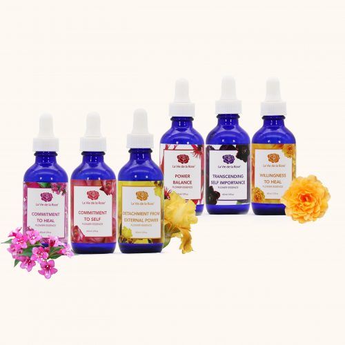 flower essence sets serving humanity flower essences la vie de la rose